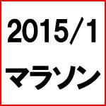 2015年1月お買い物マラソン